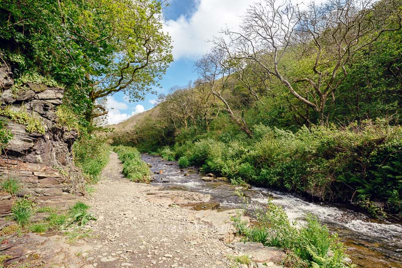 Picture - river valency near boscastle