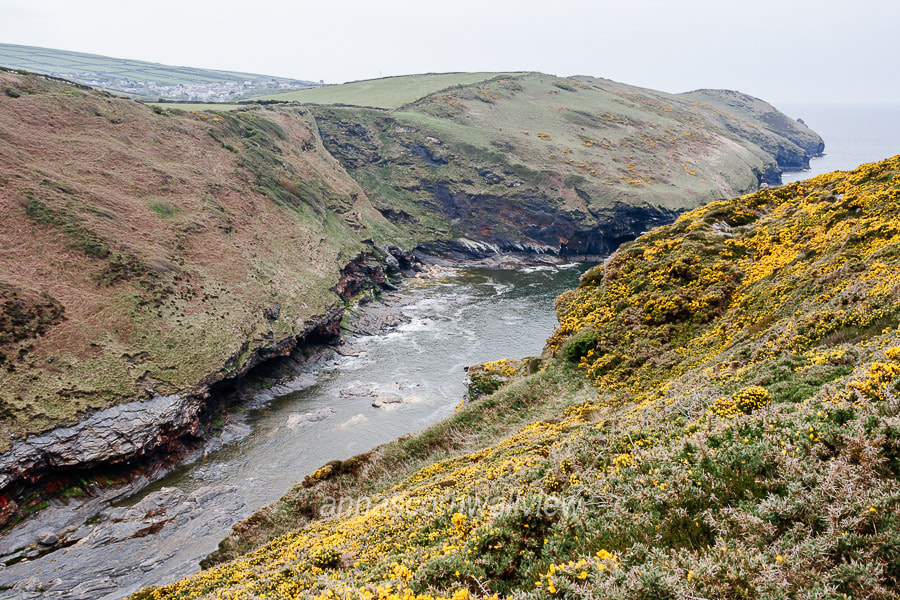 Picture of coastline between Pentargon and Penally Hill, Boscastle